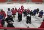 Moterys grįžta ant ledo (treniruotės sekmadieniais)