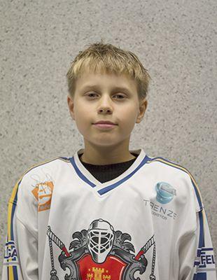 Aleksandras Paulauskas